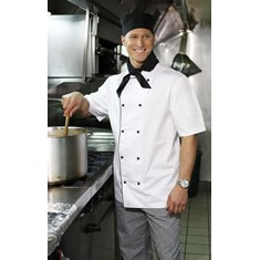 Chef's Short Sleeved Jacket